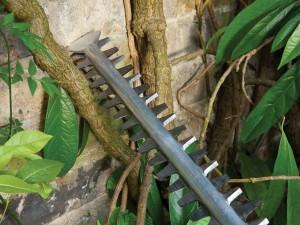 Conseils d'utilisation et d'entretien cisaille haies Bosch Taille-haie électrique filaire Bosch AHS 60-26