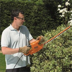 taille formation arbuste Black and Decker 50 cm