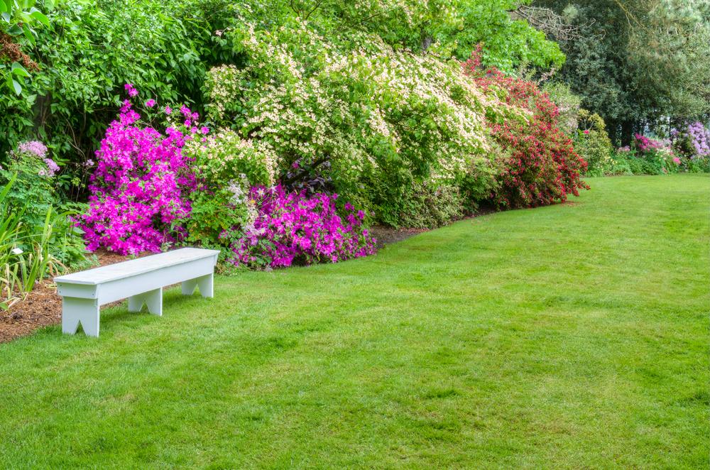 Le jardinage au jardin d ornement et massifs de fleurs en for Au jardin conseils en jardinage