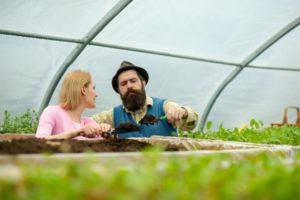 Amendement du sol pour une terre plus productive