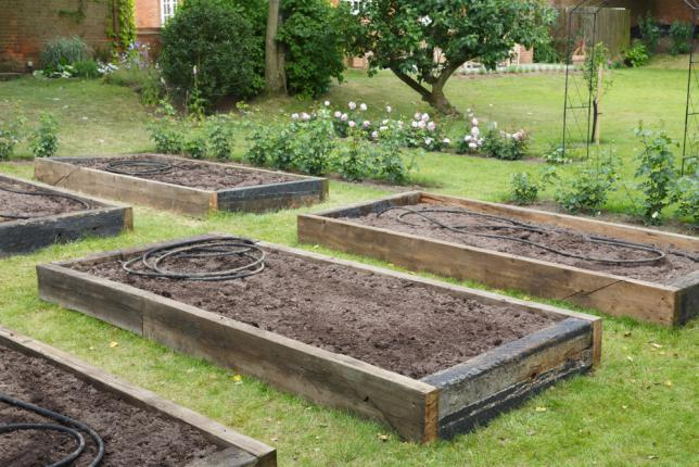 Disposition des bacs potagers