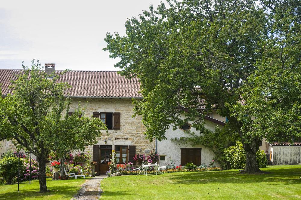 Arbres pour jardin traditionnel français