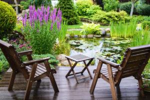 Bassin de jardin avec plantes aquatiques devant une terrasse