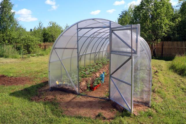Cultiver des légumes sous serre