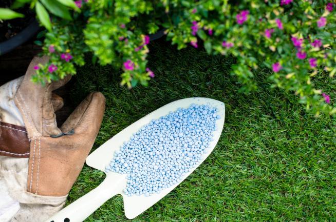 Engrais de pelouse en granulés