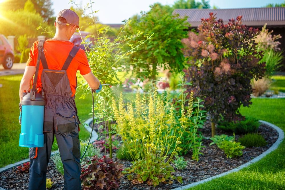 Entretien du jardin par un jardinier