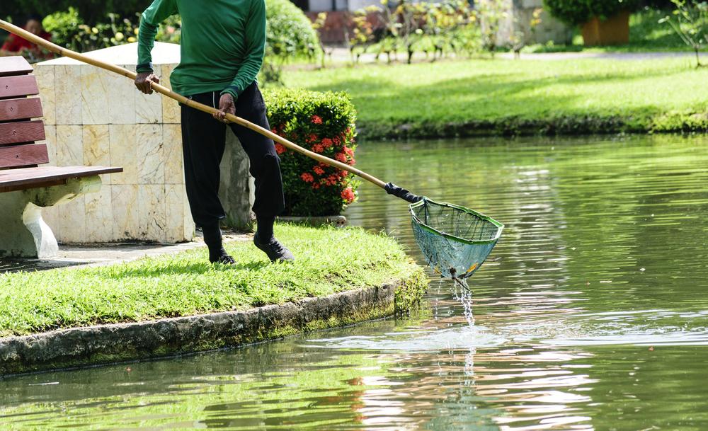 Entretien milieu aquatique