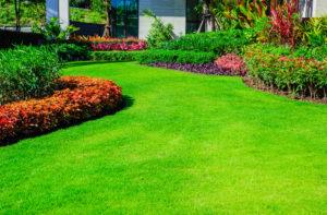 Espace vert pour un etablissement professionnel