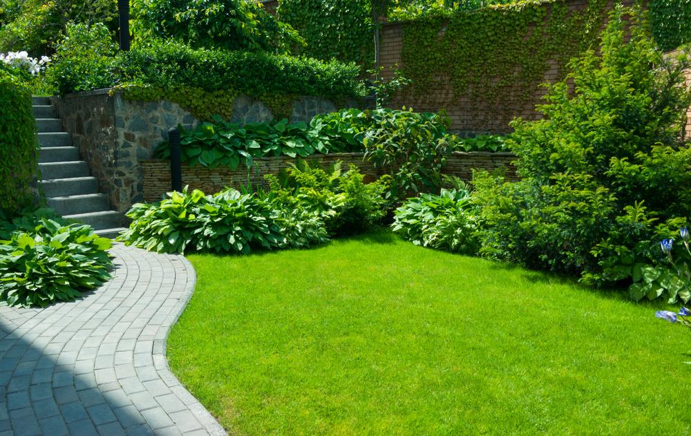 Espace vert pour une résidence