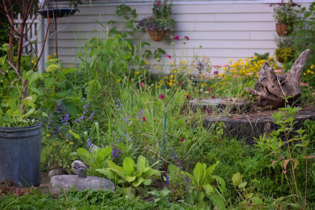 Exemple d'aménagement de jardin potager vivace