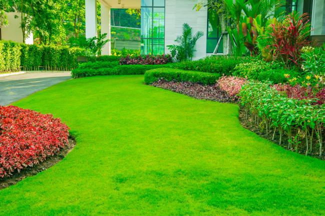 Maison moderne avec une belle pelouse entretenue