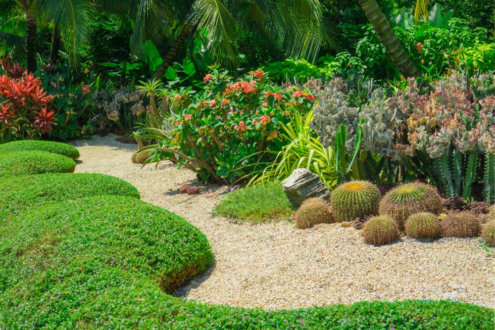 Exemple de massifs bien aménagés et entretenus dans un jardin tropical