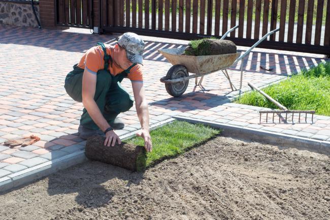 Pose de gazon en plaques pour une nouvelle pelouse