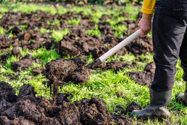 Préparation du jardin potager pour la plantation