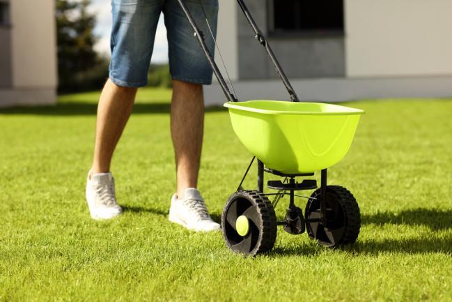 Semer de nouvelles graines d'herbe pour rembourrer la pelouse