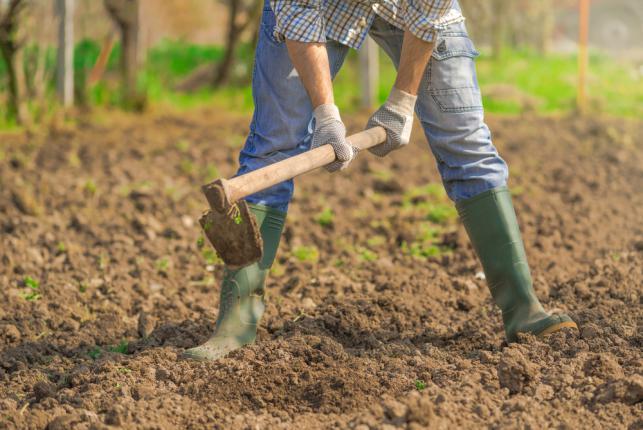 Travailler la terre pour une nouvelle saison de croissance