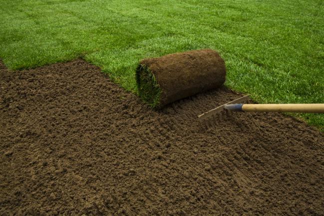 Travaux à faire pour poser une pelouse en plaques