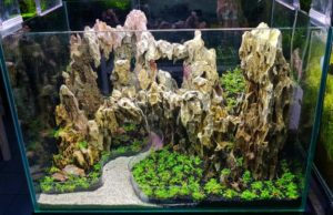 Aquascaping hardscape
