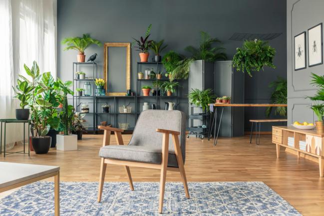 Comment Reussir Une Jardiniere D Interieur Ou De Terrasse
