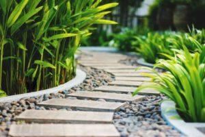 Allée de jardin tropicale