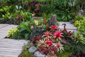 Aménagement d'un jardin serre