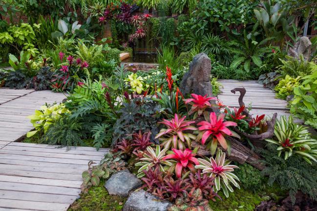 Aménagement d'un jardin serré