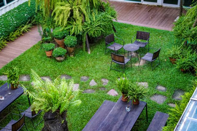 Arbustes à planter dans un petit jardin