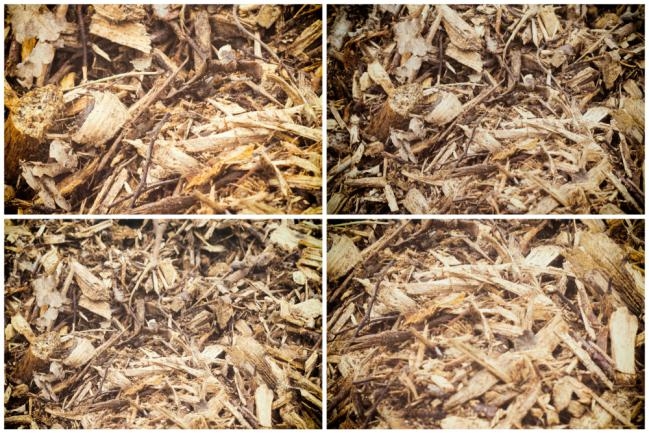 Brf ou bois raméal fragmenté