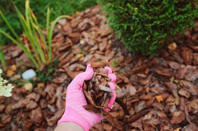 Comment utiliser le bois rameal fragmenté