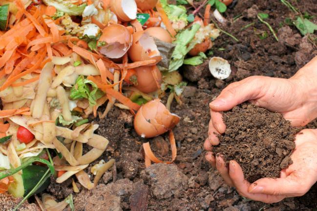 Composter les déchets directement au sol