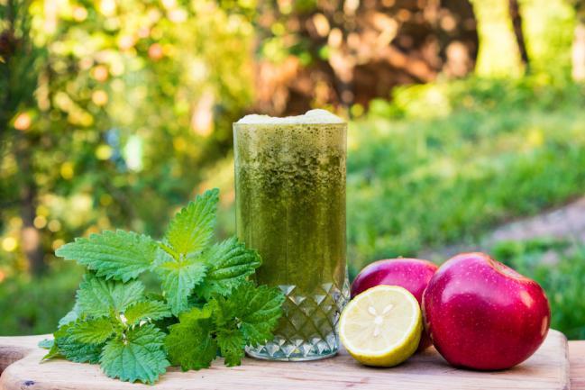 Concocter du jus d'ortie pour une sante meilleure et plus de vitalité