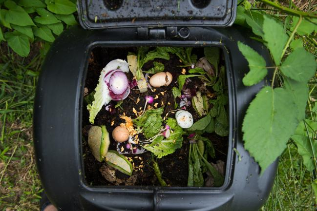 Déchets de cuisine à transformer en compost