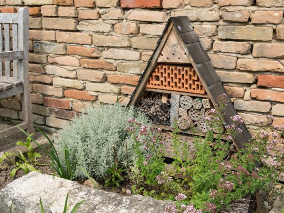 Installer un hôtel d'insecte dans son jardin pour accueillir les abeilles