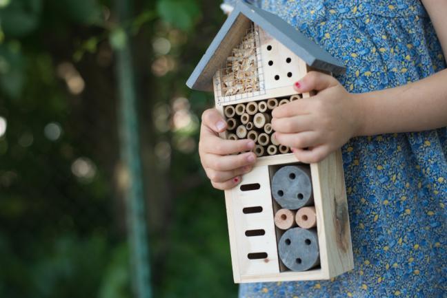 Installer un hôtel pour insectes