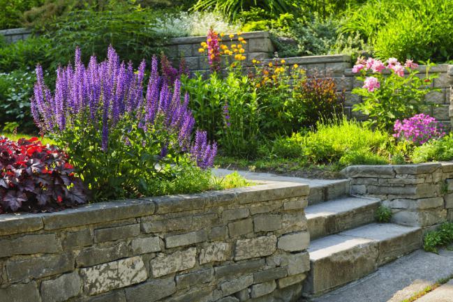 Jardin en pente aménagé avec des marches en pierre
