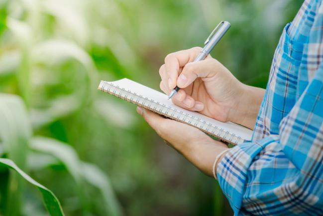 Planification et budgétisation aménagement jardin