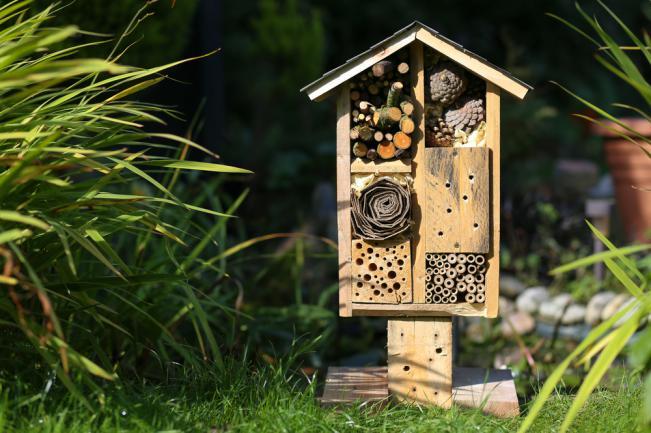 Refuge pour la faune du jardin (abri pour coccinelles, papillons et abeille)