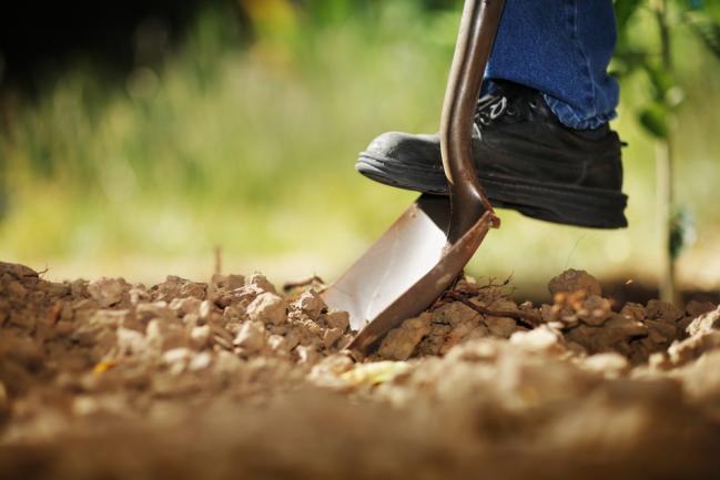 Retourner le sol du jardin