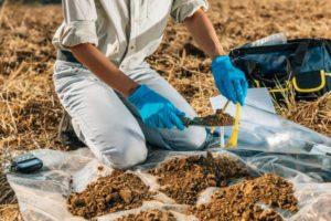 Test et analyse du sol par un agronome