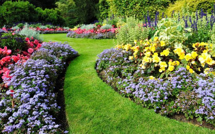 Allée de gazon entoure de massifs fleuris