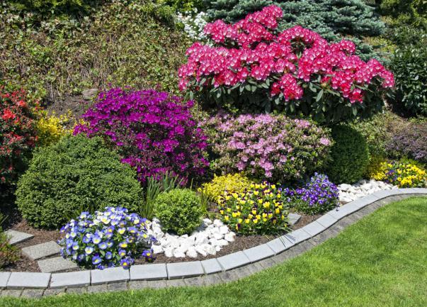 Massifs de fleurs réussis