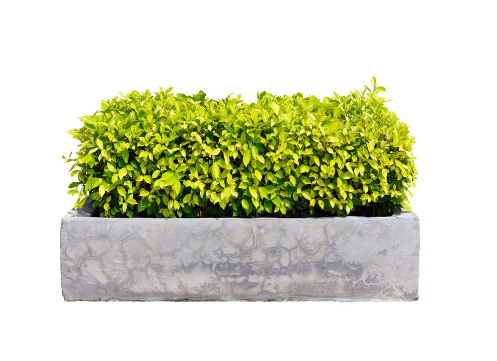 jardiniere-parpaing-vue-densemble